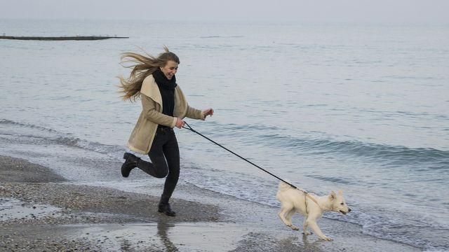 Pies - idealny towarzysz podczas biegania