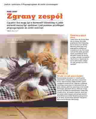 Maxi ZOO - gazetka promocyjna ważna od 01.10.2018 do 31.05.2019 - strona 34.