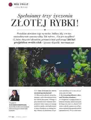 Hebe - gazetka promocyjna ważna od 01.04.2020 do 30.04.2020 - strona 110.