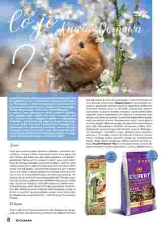 ZOO Karina - gazetka promocyjna ważna od 01.07.2020 do 31.07.2020 - strona 19.