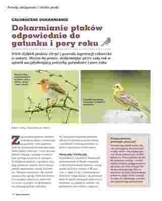 Maxi ZOO - gazetka promocyjna ważna od 05.05.2018 do 31.03.2019 - strona 34.