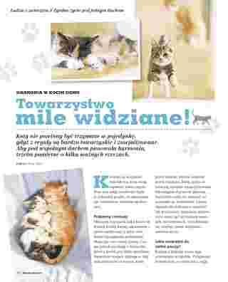Maxi ZOO - gazetka promocyjna ważna od 05.05.2018 do 31.03.2019 - strona 38.