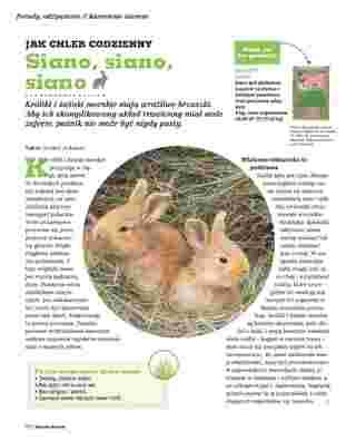 Maxi ZOO - gazetka promocyjna ważna od 01.10.2018 do 31.05.2019 - strona 28.