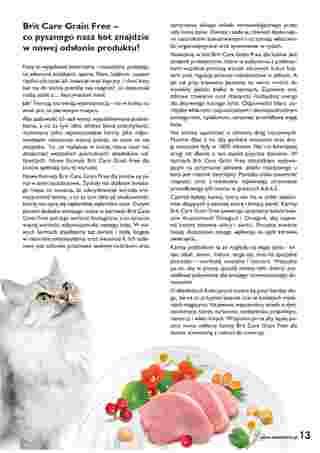 ZOO Karina - gazetka promocyjna ważna od 01.11.2020 do 30.11.2020 - strona 13.