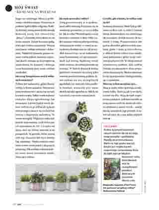 Hebe - gazetka promocyjna ważna od 01.01.2020 do 31.01.2020 - strona 112.