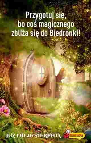 Biedronka - gazetka promocyjna ważna od 22.08.2019 do 28.08.2019 - strona 64.