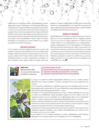 Hebe - gazetka promocyjna ważna od 01.07.2019 do 31.08.2019 - strona 33.