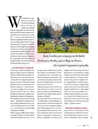 Hebe - gazetka promocyjna ważna od 01.07.2020 do 31.08.2020 - strona 30.