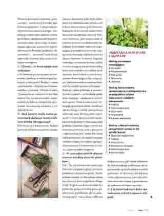 Hebe - gazetka promocyjna ważna od 01.07.2020 do 31.08.2020 - strona 45.