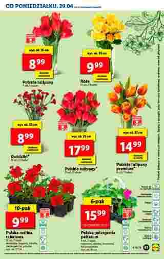 Lidl - gazetka promocyjna ważna od 29.04.2019 do 04.05.2019 - strona 63.