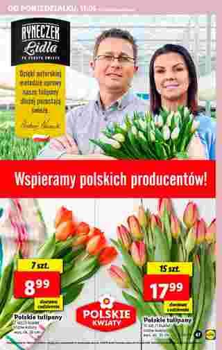Lidl - gazetka promocyjna ważna od 11.05.2020 do 13.05.2020 - strona 42.