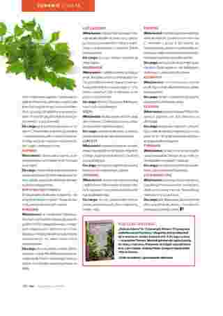 Hebe - gazetka promocyjna ważna od 01.06.2019 do 30.06.2019 - strona 100.