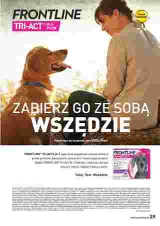 ZOO Karina - gazetka promocyjna ważna od 01.02.2021 do 28.02.2021 - strona 29.