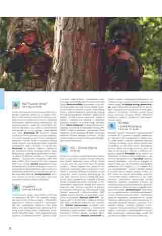 Almatur - gazetka promocyjna ważna od 02.04.2020 do 22.09.2020 - strona 52.