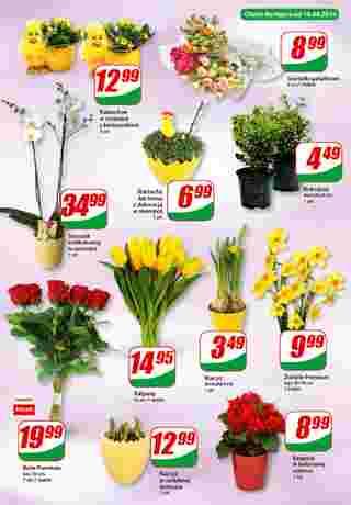 Dino - gazetka promocyjna ważna od 17.04.2019 do 23.04.2019 - strona 16.