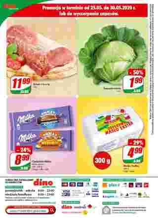 Dino - gazetka promocyjna ważna od 27.05.2020 do 02.06.2020 - strona 13.