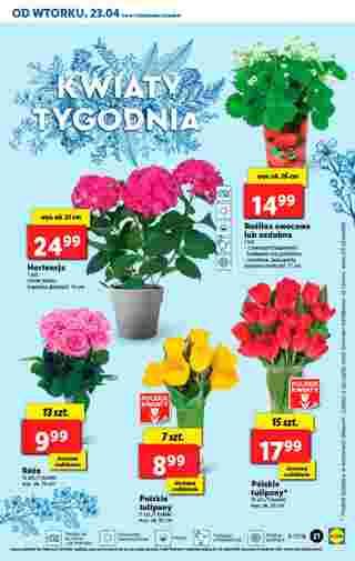 Lidl - gazetka promocyjna ważna od 23.04.2019 do 28.04.2019 - strona 21.