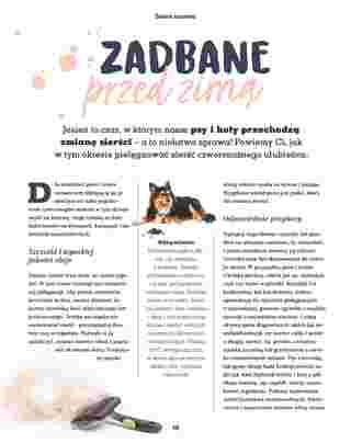 Maxi ZOO - gazetka promocyjna ważna od 23.09.2019 do 22.12.2019 - strona 16.