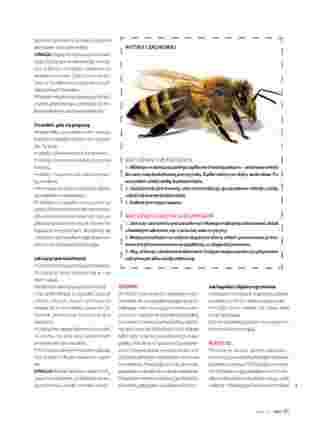Hebe - gazetka promocyjna ważna od 01.07.2019 do 31.08.2019 - strona 99.