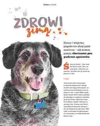 Maxi ZOO - gazetka promocyjna ważna od 23.09.2019 do 22.12.2019 - strona 30.