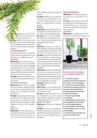 Hebe - gazetka promocyjna ważna od 01.06.2019 do 30.06.2019 - strona 99.