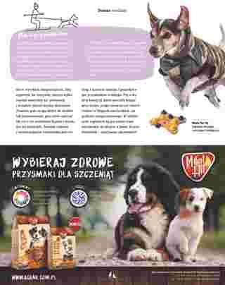 Maxi ZOO - gazetka promocyjna ważna od 23.09.2019 do 22.12.2019 - strona 27.
